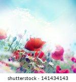 poppy flower in the sky | Shutterstock . vector #141434143