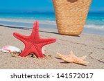 sea star  shells and wicker bag ... | Shutterstock . vector #141572017