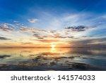 the beautiful flowers on beach... | Shutterstock . vector #141574033