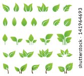 set of green leaves design...