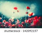 Poppies At Night