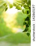abstract environmental... | Shutterstock . vector #142865197