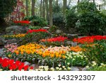 Colorful Spring Lawn With...
