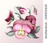 bunch of vintage pink pansy... | Shutterstock . vector #143531623