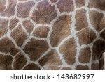 Giraffe's Skin