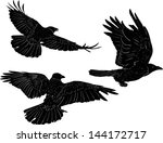 illustration with set of three... | Shutterstock .eps vector #144172717