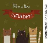 Cat's Saturday Postcard. The...