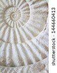 Ammonite Prehistoric Fossil On...