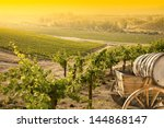 grape vineyard with vintage... | Shutterstock . vector #144868147