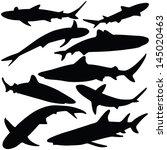 Vector Illustration Of Shark...