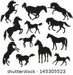 wild horses | Shutterstock .eps vector #145305523