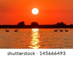 a beautiful sunrise in the... | Shutterstock . vector #145666493