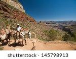 Grand Canyon  Az   June 8  A...