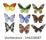 butterfly on white | Shutterstock . vector #146228087