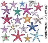 vector starfish set | Shutterstock .eps vector #146596187
