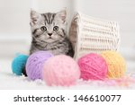 Stock photo gray striped kitten sitting next to a basket ball of yarn in the interior 146610077