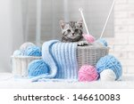 Stock photo gray striped kitten sitting next to a basket ball of yarn in the interior 146610083