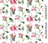 Stock photo pattern of roses 146653637