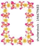 floral frame made from white... | Shutterstock .eps vector #146679683