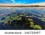 a beautiful lake in danube... | Shutterstock . vector #146733497