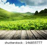 Wood Floor On Tea Plantation...