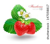 strawberry with leaves and... | Shutterstock .eps vector #147058817