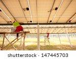 make a power | Shutterstock . vector #147445703