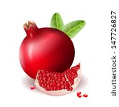 pomegranate icon can be used... | Shutterstock .eps vector #147726827