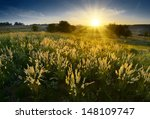 magic sunrise in the valley of... | Shutterstock . vector #148109747