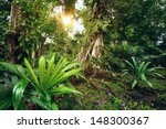 enigmatic and mysterious... | Shutterstock . vector #148300367