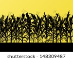 corn field detailed countryside ... | Shutterstock .eps vector #148309487
