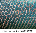 background of giant fish scale | Shutterstock . vector #148721777