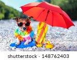 Dog Under Umbrella At Beach...