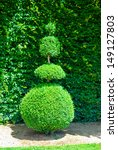 Topiary Tree  Formal Garden ...