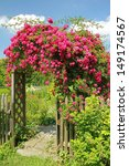 Stock photo arched entrance with rambler rose full bloom 149174567