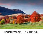 Colorful Autumn Morning In The...