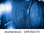 Blue Spider Net