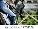 Horse Theme  Jockeys  Horse...
