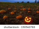 Jack O Lantern In Pumpkin Patch