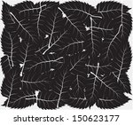 black leaves background | Shutterstock .eps vector #150623177