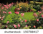 Stock photo beautiful rose garden 150788417