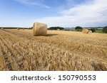 Straw Bales Harvest On Stubble...