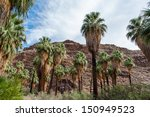 the palm trees in the canyon...   Shutterstock . vector #150949523