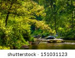 Scene Along Gunpowder Falls In...