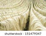 Sisal Fiber  Raw Material From...