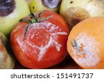 modly fruits   Shutterstock . vector #151491737