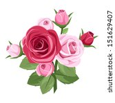 Red And Pink Roses. Vector...