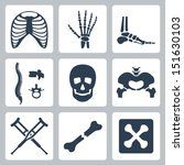 vector isolated skeleton icons... | Shutterstock .eps vector #151630103