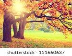 autumn landscape | Shutterstock . vector #151660637