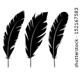 illustration set feathers... | Shutterstock .eps vector #152167583